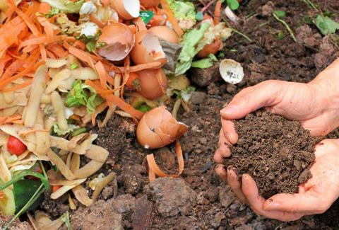 2019 Living Sustainably - Compost