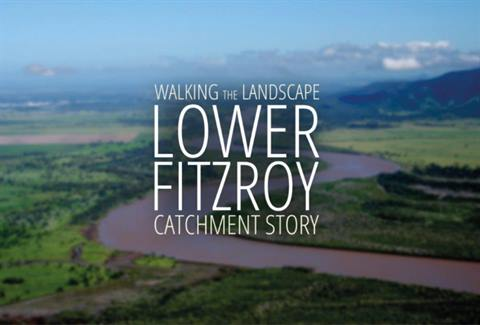 Lower-Fitzroy-Catchment-Story